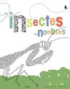 Les insectes en nombres